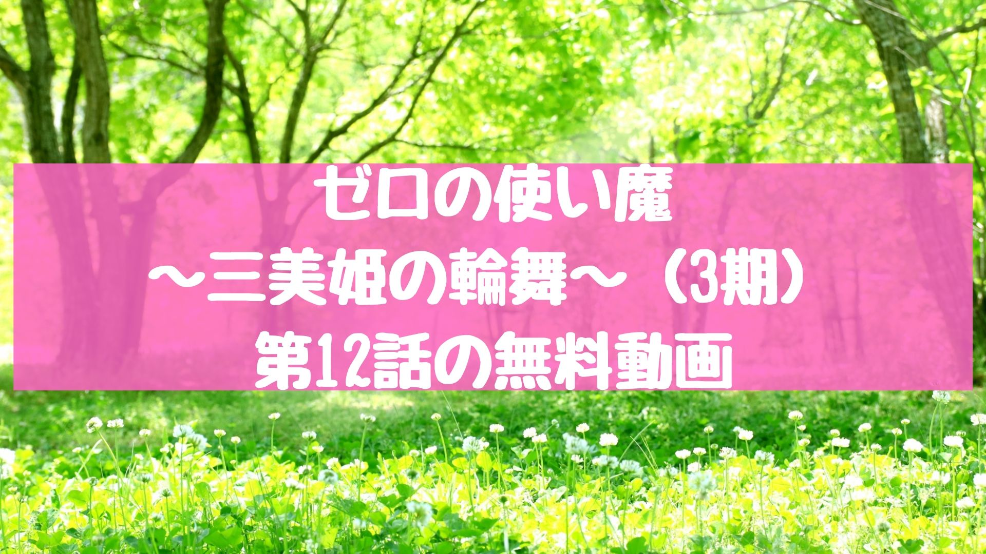 ゼロの使い魔~三美姫の輪舞~(3期) 第12話(最終回)の無料動画
